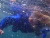 puerto-madryn-snorkelen-mees